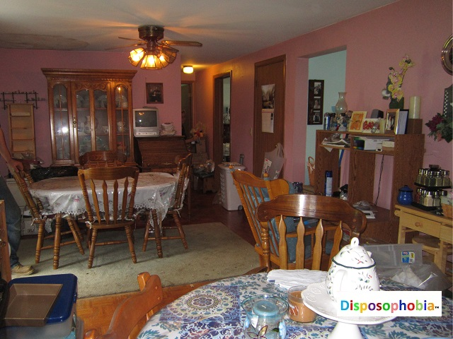 Dining Room after Disaster Masters